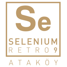 SELENIUM RETRO